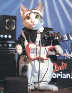 rockcat.jpg