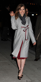Preppie_-_Amy_Adams_at_the_Late_Show_with_David_Letterman_-_Jan._5_2010_3837.jpg