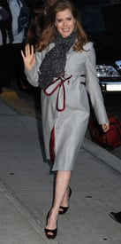 Preppie_-_Amy_Adams_at_the_Late_Show_with_David_Letterman_-_Jan._5_2010_4882.jpg