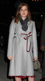 Preppie_-_Amy_Adams_at_the_Late_Show_with_David_Letterman_-_Jan._5_2010_5949.jpg