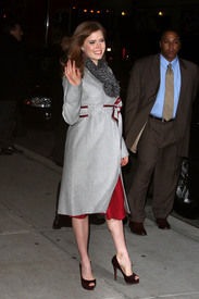 Preppie_-_Amy_Adams_at_the_Late_Show_with_David_Letterman_-_Jan._5_2010_679.jpg
