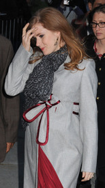 Preppie_-_Amy_Adams_at_the_Late_Show_with_David_Letterman_-_Jan._5_2010_6903.jpg