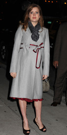 Preppie_-_Amy_Adams_at_the_Late_Show_with_David_Letterman_-_Jan._5_2010_7932.jpg