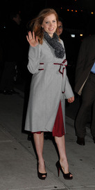 Preppie_-_Amy_Adams_at_the_Late_Show_with_David_Letterman_-_Jan._5_2010_9791.jpg