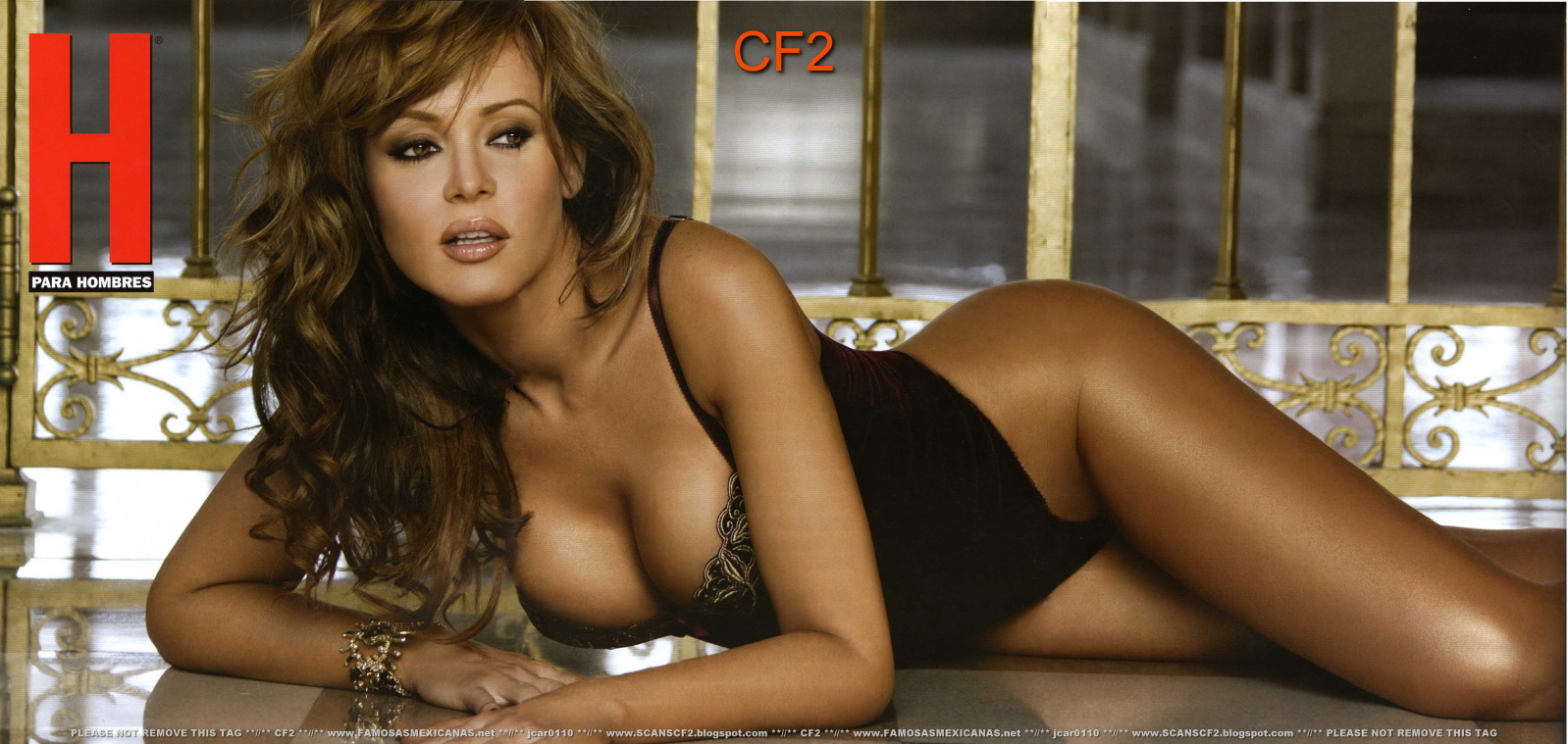 Gabriella Spanic Porn 22