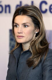celebrity-paradise.com-The_Elder-Princess_Letizia_2010-01-25_-_opening_of_the_Research_and_Development.jpg