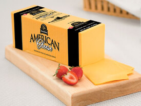 Image result for American cheese.jpg