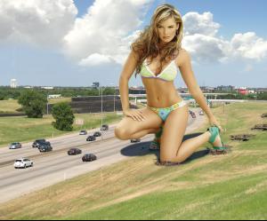 Freeway_observer.jpg