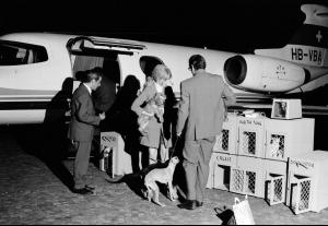 FRANCE. Transporting with dogs to France. 1967.jpg