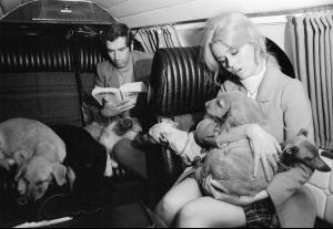 FRANCE. Transporting with dogs to France. 1967-2.jpg