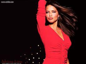 Adriana_Lima_wall_anth30.jpg