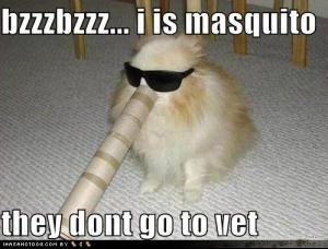 funny_dog_pictures_mosquitos_do_not_go_to_the_vet.jpg