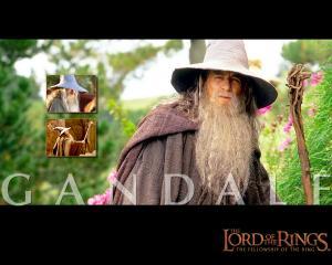 ianLOTR_Gandalf_1.JPG