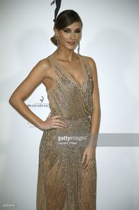 miss-france-2015-camille-cerf-attends-les-bonnes-fees-charity-gala-at-picture-id655795784.jpg