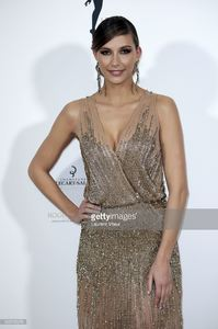 miss-france-2015-camille-cerf-attends-les-bonnes-fees-charity-gala-at-picture-id655795976.jpg