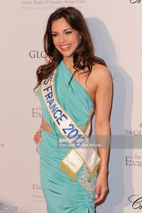 marine-lorphelin-attends-the-global-gift-gala-at-hotel-george-v-on-picture-id168679202.jpg