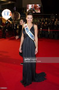marine-lorphelin-attends-the-nrj-music-awards-2013-at-palais-des-in-picture-id535846624.jpg