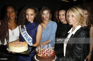 miss-france-2003-corinne-coman-miss-france-2017-alicia-aylies-miss-picture-id669983884.jpg