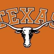 TexasLongHorn2013