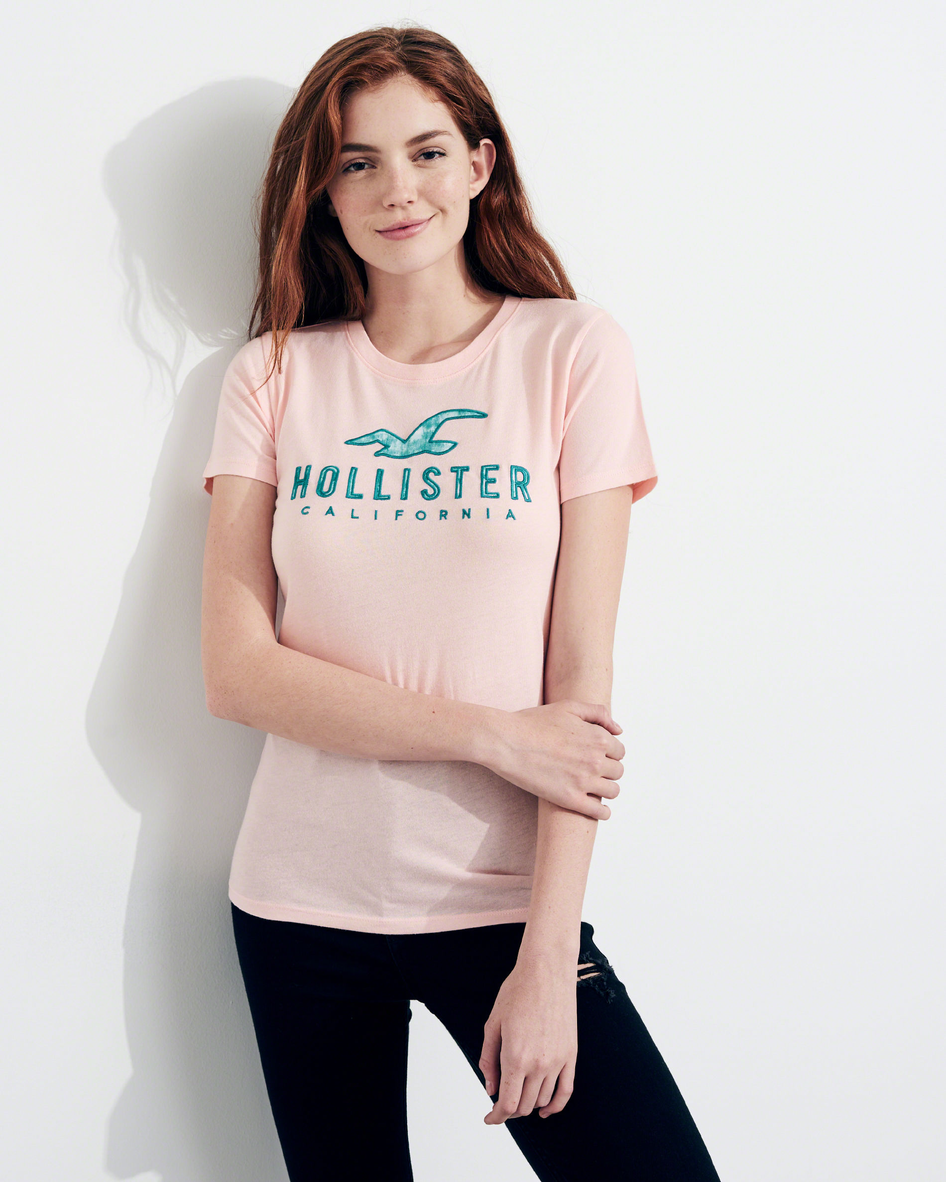 hollister model
