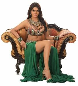 Sherlyn Chopra 2.jpg