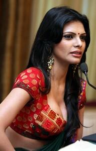 Sherlyn Chopra 30.jpg