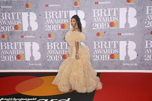 10057520-6726107-Red_carpet_arrival_Maya_captured_attention_as_she_arrived_on_the-a-2_1550690171029.thumb.jpg.cd5110b921a9f0aa11b9311842c0a991.jpg