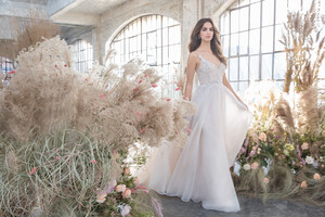 tara-keely-lazaro-bridal-spring-2019-style-2911-rosa.jpg