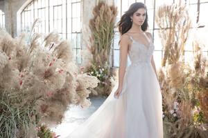 tara-keely-lazaro-bridal-spring-2019-style-2911-rosa_0.jpg