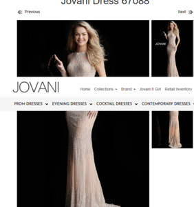 Screenshot_2019-10-02 Nude long fitted beaded sleeveless close back prom dress (4).png