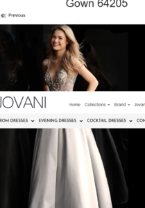 Screenshot_2019-10-02 Jovani Silver Embellished Bodice A Line Prom Gown 64205.png