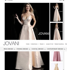 Screenshot_2019-10-02 Jovani 59915 Soft Gold Simple Metallic Long Prom Gown(2).png