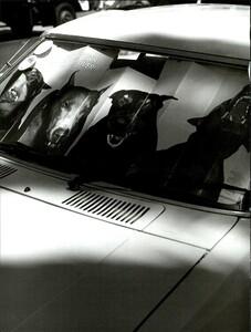 Weber_Vogue_Italia_August_1995_09.thumb.jpg.c3c63db876c123e4e9d4ce09258967c1.jpg