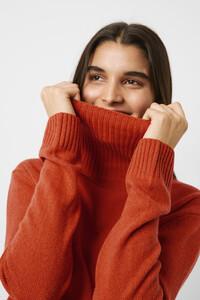 78mcv-womens-de-cinnamonstick-cashmere-blend-roll-neck-jumper-7.jpg
