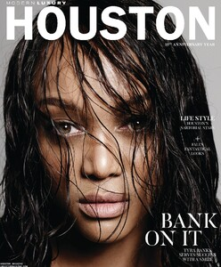 Moderrn Luxury Houston 920.jpg