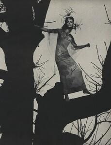 Tree_Avedon_US_Vogue_March_15th_1966_04.thumb.jpg.d31a87f64424e50a48e0249a4d1f7ac2.jpg