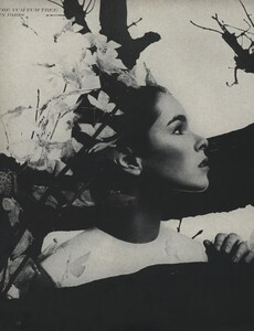 Tree_Avedon_US_Vogue_March_15th_1966_05.thumb.jpg.500fd64470390a1cdf3bc0485a252a92.jpg