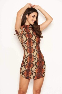 Rust-Animal-Print-Bodycon-High-Neck-Dress-5_800x.jpg